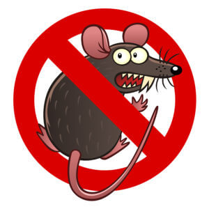 Rodent Damage Coverage for your car in Opelousas, LA