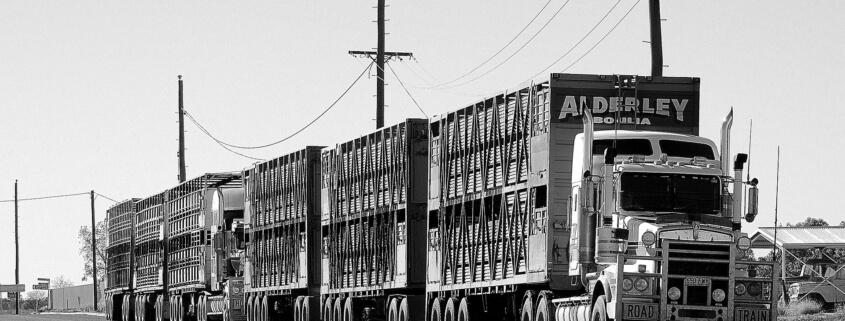 Hot Shot Trucking Insurance, Opelousas, LA